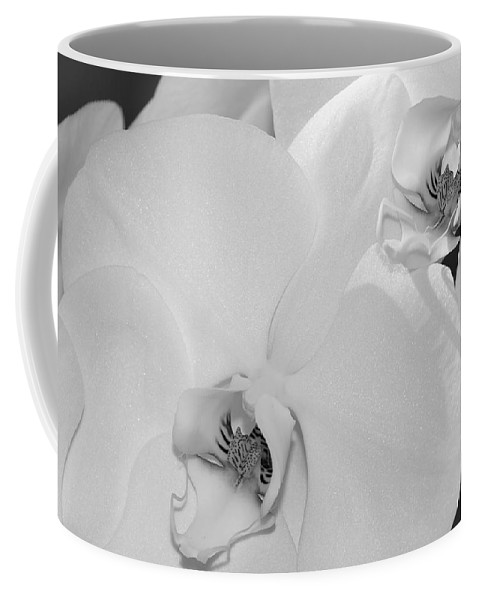 Bronstein Coffee Mug featuring the photograph Orchids by Sandra Bronstein