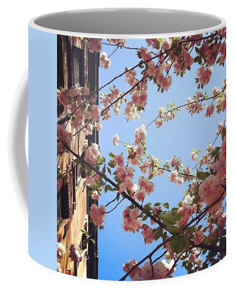 Cherry Coffee Mug featuring the photograph Outside Is The Best Side by Katie Cupcakes
