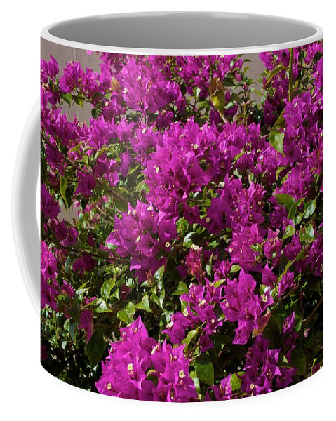 Ave Maria Coffee Mug featuring the photograph Over by Joseph Yarbrough