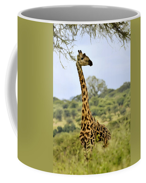 Africa Coffee Mug featuring the photograph Painted Giraffe by Jack Daulton