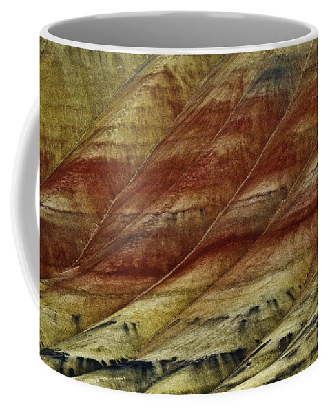 Painted Hills Lines Coffee Mug featuring the photograph Painted Hills Lines by Wes and Dotty Weber