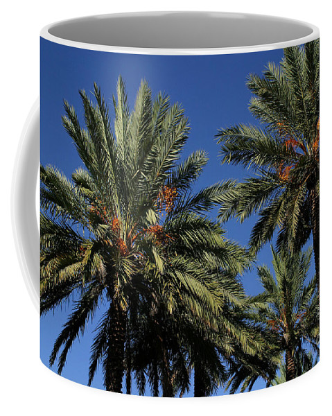 Gary Gingrich Coffee Mug featuring the photograph Palms 9838b by Gary Gingrich Galleries