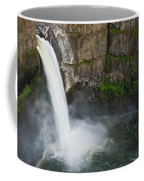 Palouse Falls Coffee Mug featuring the photograph Palouse Falls In Spring by Greg Nyquist