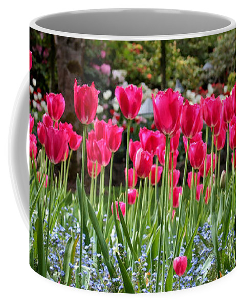 Pink Tulips Coffee Mug featuring the photograph Panel Of Pink Tulips by Carol Groenen