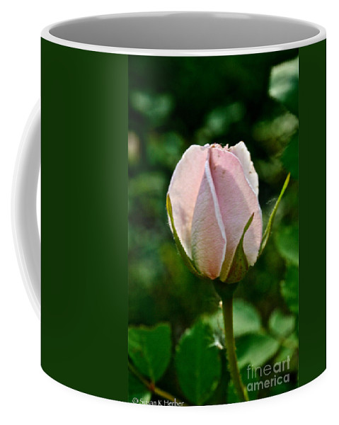 Plant Coffee Mug featuring the photograph Pastel Rose Petals by Susan Herber