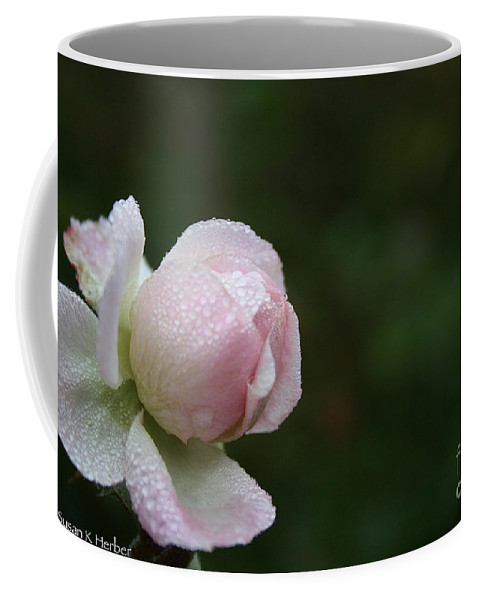 Flower Coffee Mug featuring the photograph Pearlized by Susan Herber