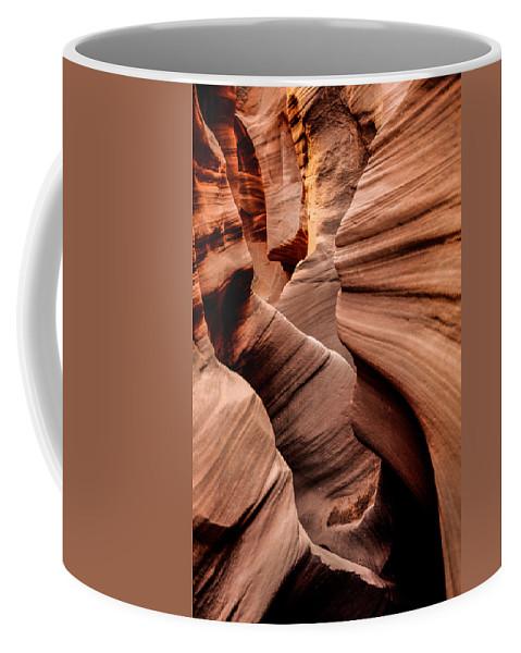 Outdoor Coffee Mug featuring the photograph Peek A Boo by Chad Dutson