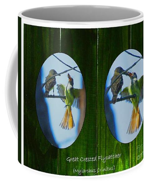 Great Crested Flycatcher Coffee Mug featuring the digital art Peeking Through The Fence by Barbara Bowen