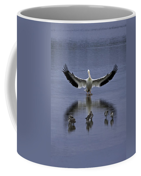 Ding Darling Coffee Mug featuring the photograph Pelican Protector - Florida Wildlife Scene by Rob Travis