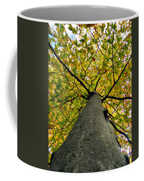 Coffee Mug featuring the photograph Peridot Above by Art Dingo