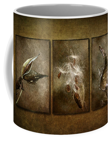 Milkweed Pod Coffee Mug featuring the photograph Perpetual Generations by Dale Kincaid