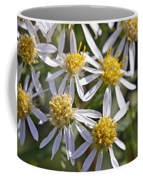 Flower Coffee Mug featuring the photograph Petals by David Rucker