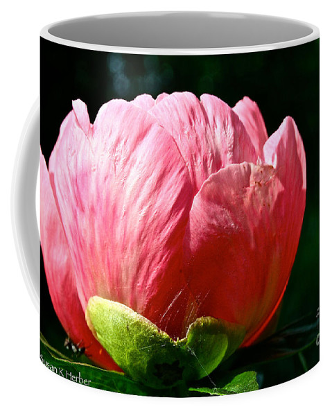 Plant Coffee Mug featuring the photograph Petals Up by Susan Herber