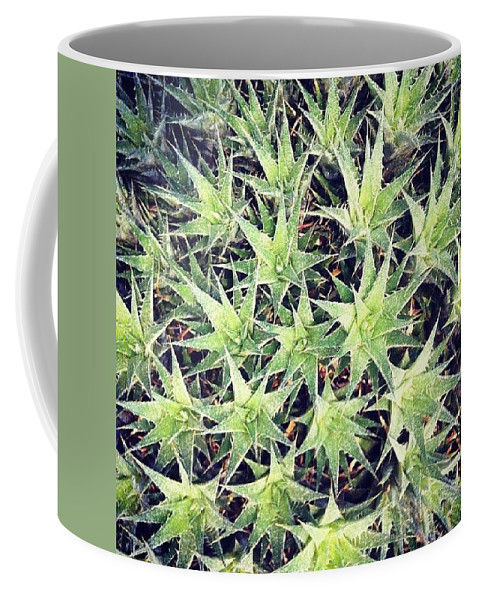 Flower Coffee Mug featuring the photograph Philadelphia Flower Show by Katie Cupcakes