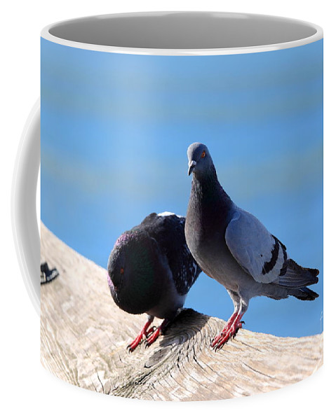 Pigeon Coffee Mug featuring the photograph Pigeon by Henrik Lehnerer
