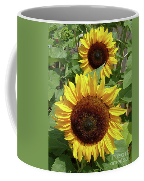 Landscape Coffee Mug featuring the photograph Piggyback by Lauren Leigh Hunter Fine Art Photography