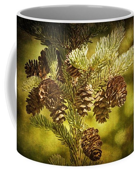 Art Coffee Mug featuring the photograph Pine Cones No.056 by Randall Nyhof