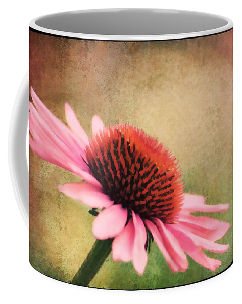 Beauty Coffee Mug featuring the photograph Pink Beauty by Darren Fisher