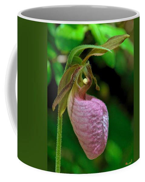 Nature Coffee Mug featuring the photograph Pink Lady Slipper Orchid Dspf232 by Gerry Gantt