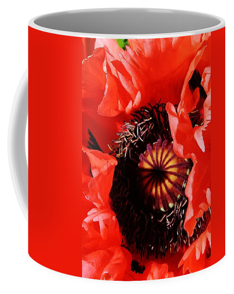 Flora Coffee Mug featuring the photograph Pink Poppy Close Up by Bruce Bley