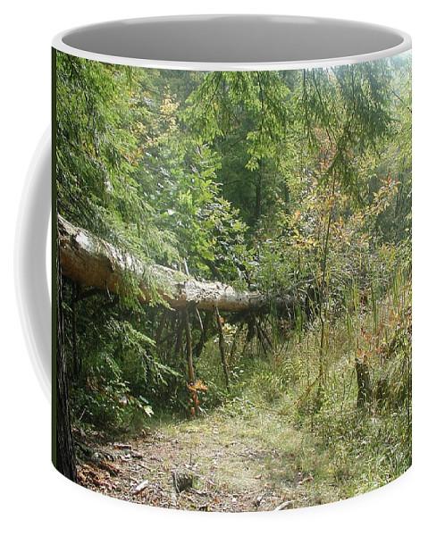 Coho Salmon Coffee Mug featuring the photograph Pinwheel by Joseph Yarbrough
