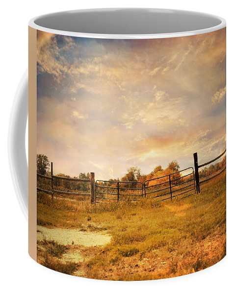 Gate Coffee Mug featuring the photograph Place Of Peace by Jai Johnson