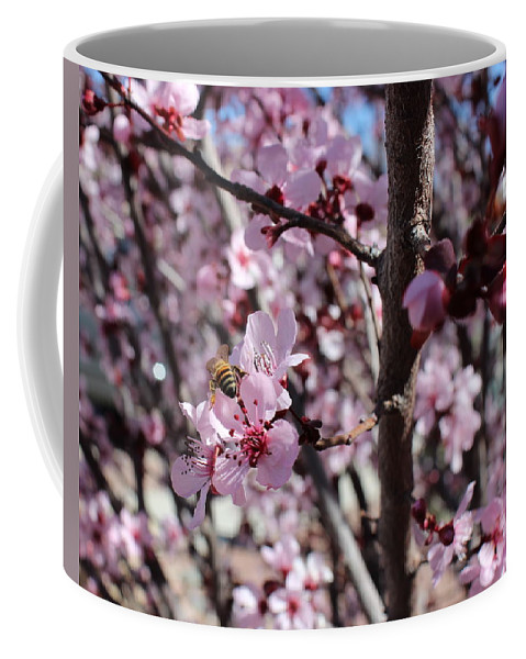 Floral Coffee Mug featuring the photograph Plum Blossoms 6 by Kume Bryant