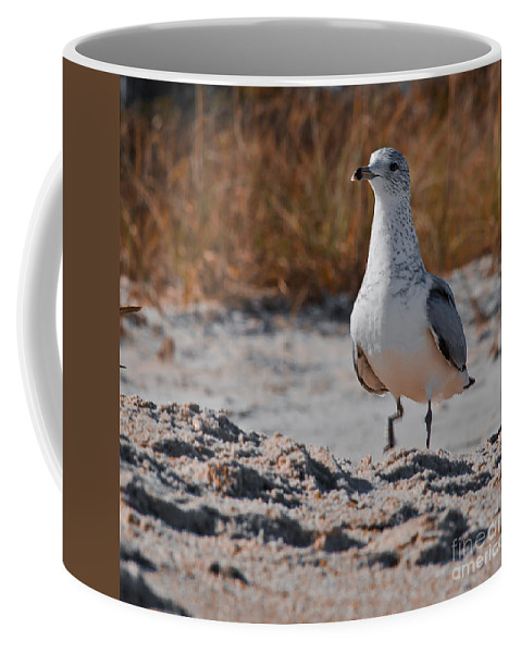 Poised Coffee Mug featuring the photograph Poised Seagull by Scott Hervieux