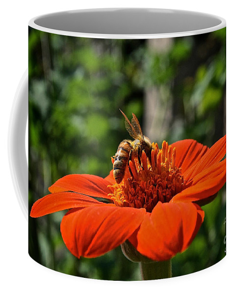 Outdoors Coffee Mug featuring the photograph Pollenating by Susan Herber