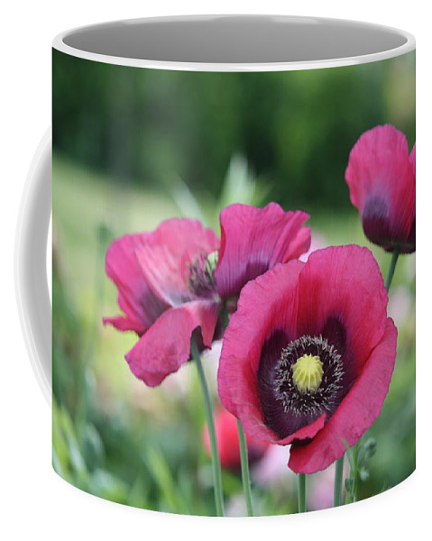 Poppy Coffee Mug featuring the photograph Poppies by Donna Walsh