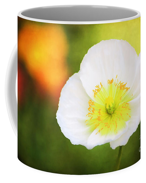 Alpine Coffee Mug featuring the photograph Poppy Of Peace by Darren Fisher