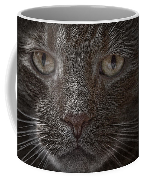 Art Coffee Mug featuring the photograph Portrait Of Cutio The Cat by Randall Nyhof