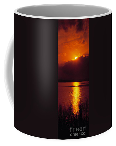 Potomac River Coffee Mug featuring the photograph Potomac Sunrise Washington Dc by Mike Nellums