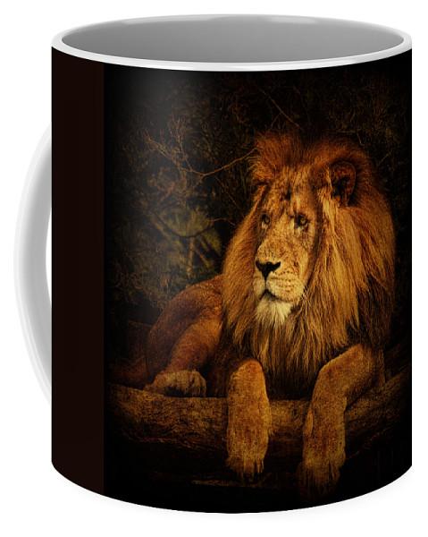 Lion Coffee Mug featuring the photograph Pragmatism by Andrew Paranavitana