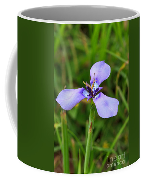 Prairie Nymph Coffee Mug featuring the photograph Prairie Nymph by Louise Heusinkveld