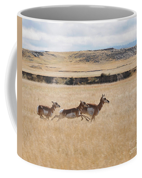 Pronghorn Antelope Coffee Mug featuring the photograph Pronghorn Antelopes On The Run by Art Whitton