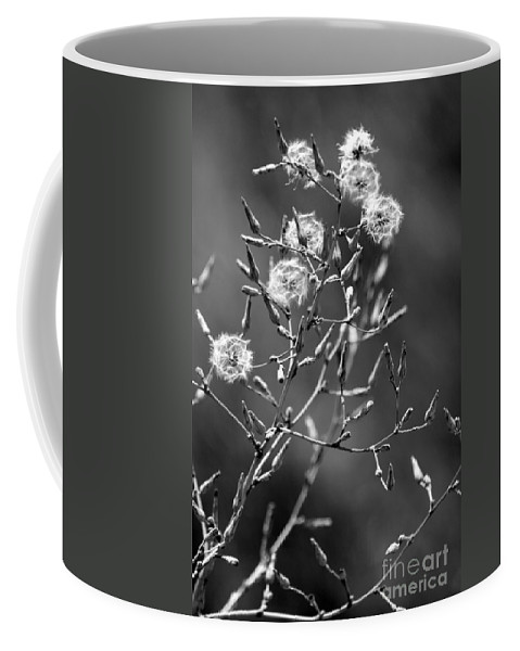Black And White Coffee Mug featuring the photograph Puffs by Rick Rauzi