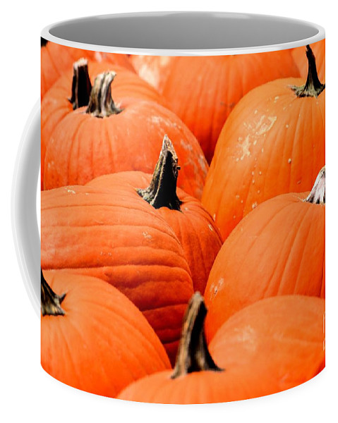 Pumpkin Coffee Mug featuring the photograph Pumpkin Harvest by Maria Urso