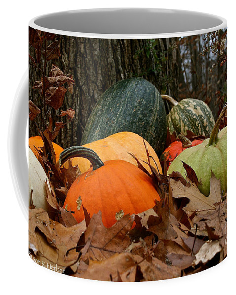 Outdoors Coffee Mug featuring the photograph Pumpkins And More Pumpkins by Susan Herber