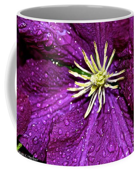 Outdoors Coffee Mug featuring the photograph Purple Rain by Susan Herber