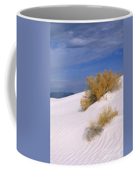 Sandra Bronstein Coffee Mug featuring the photograph Windswept - White Sands National Monument by Sandra Bronstein