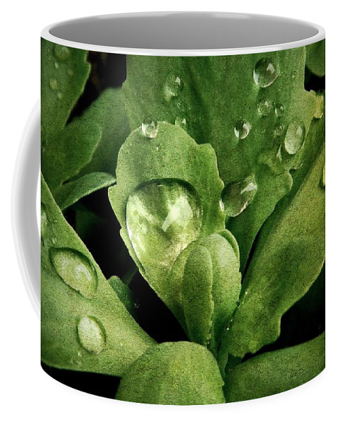 Nature Coffee Mug featuring the photograph Rain All Day by Chris Berry