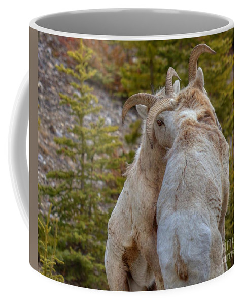 Bighorn Rams Coffee Mug featuring the photograph Ram-bunctious by James Anderson