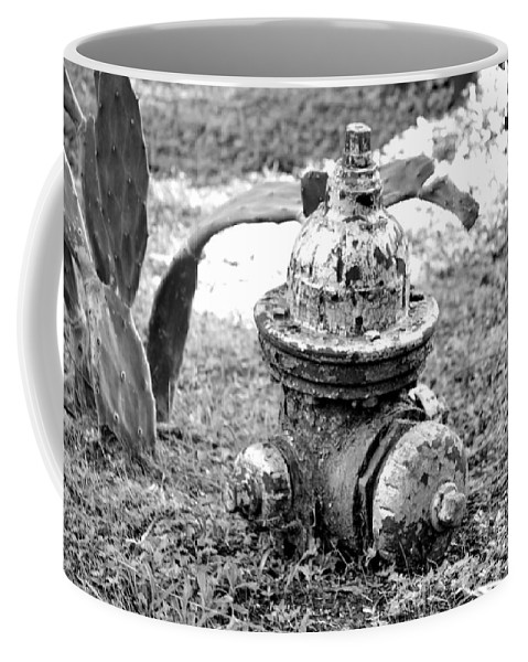 Sunken Coffee Mug featuring the photograph Ready For Service by Kari Tedrick
