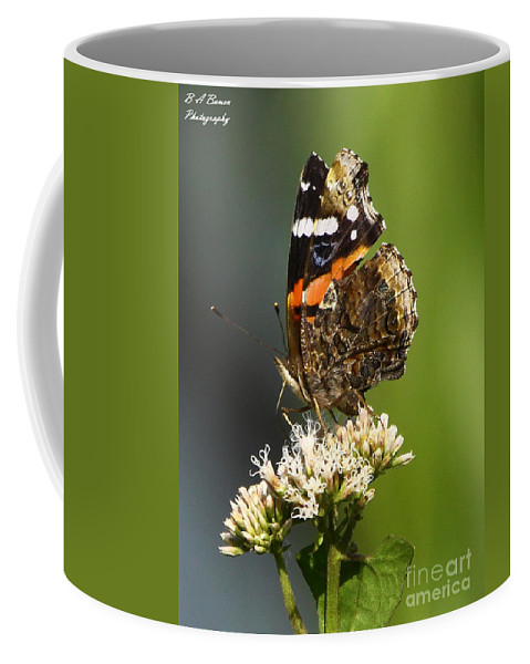 Red Admiral Coffee Mug featuring the photograph Red Admiral Butterfly by Barbara Bowen