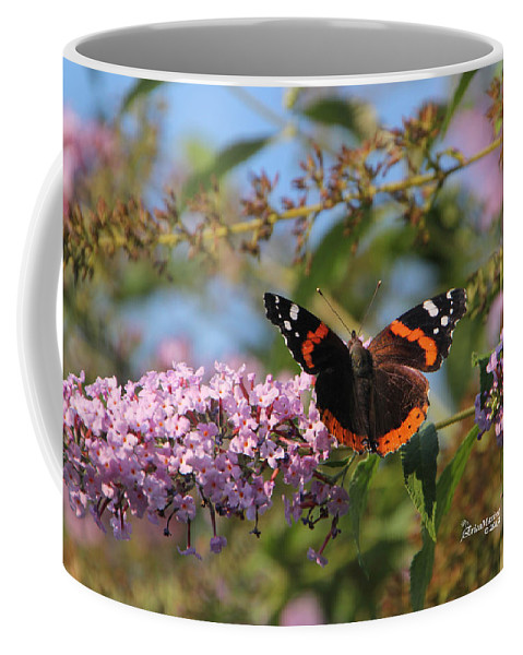 Red Admiral Butterfly Coffee Mug featuring the photograph Red Admiral Butterfly by Ericamaxine Price