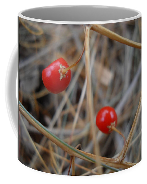 Close Up Coffee Mug featuring the photograph Red Asparagus Berries by Kent Lorentzen