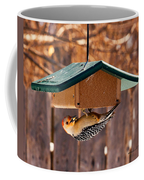 Red-bellied Woodpecker Coffee Mug featuring the photograph Red-bellied Woodpecker At Lunch by Edward Peterson