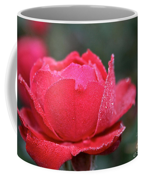 Flower Coffee Mug featuring the photograph Red Crystal Petals by Susan Herber