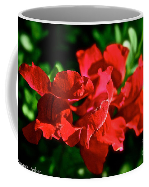 Plant Coffee Mug featuring the photograph Red Dragon by Susan Herber
